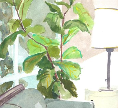 Original Watercolour painting of fiddle leaf fig plant at night