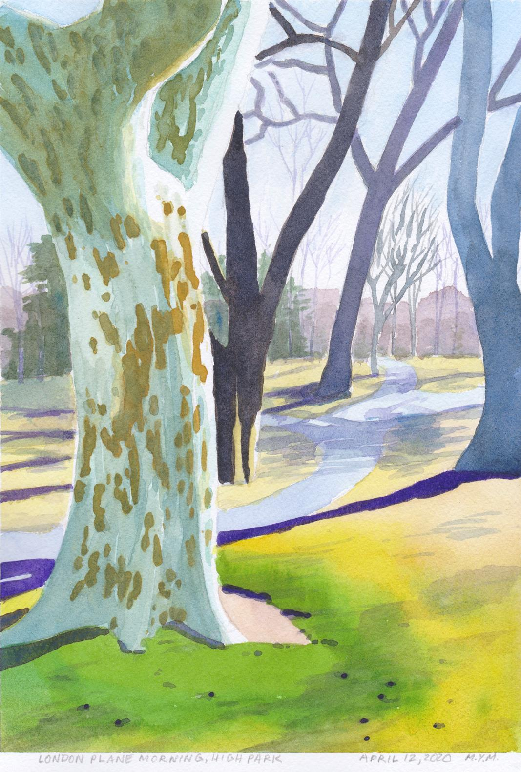 Original small watercolour painting of London PlanE tree in High Park