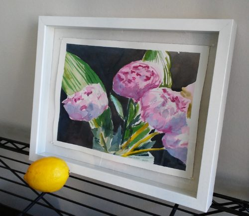 Watercolour of pink peonies in white frame with lemon to show scale