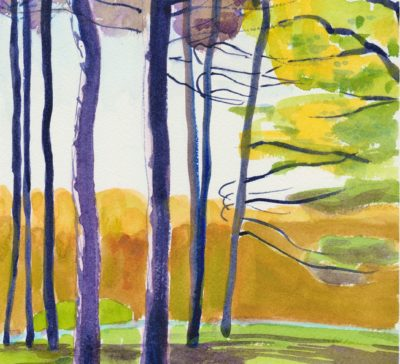 Grove of pine trees original small impressionist watercolour painting for sale