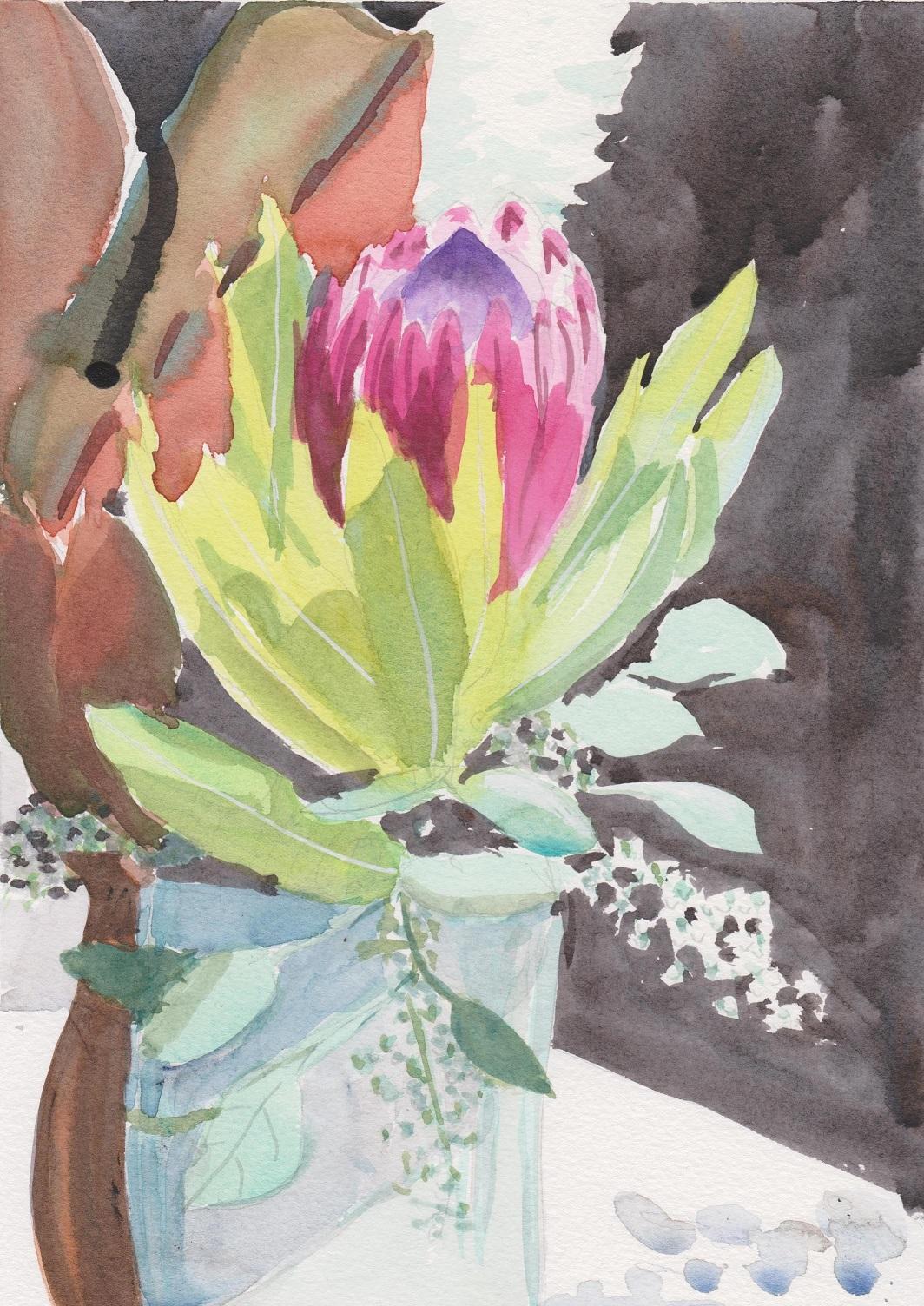 Protea bloom with eucalyptus in vase