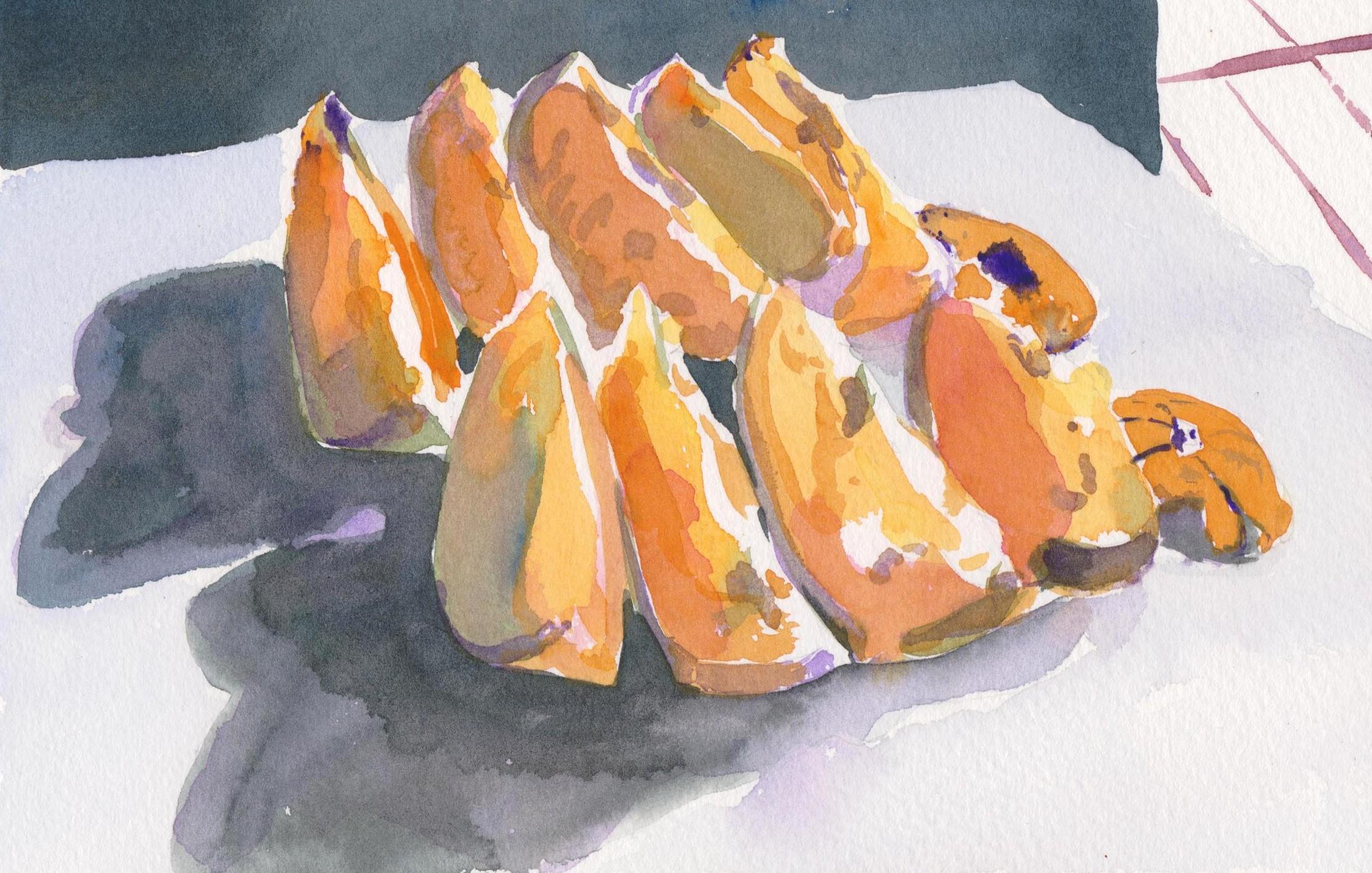 Watercolour sketch of orange slices, Girona, spain
