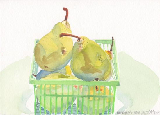 Watercolor painting of four fresh fall pears in a green plastic box.