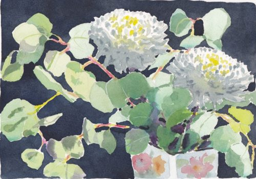 Original watercolour painting of bouquet of round eucalyptus and two large white chrysanthemums