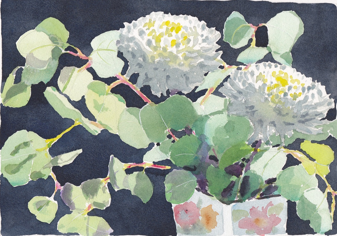 Original watercolour painting of bouquet of eucalyptus and two white chrysanthemums
