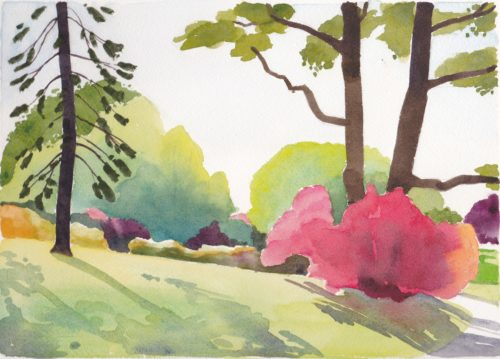 Small original watercolour not reproduction of burning bush in parkland lit by morning sun