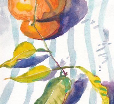 Small watercolour of two street oranges