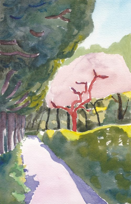 Impressionist watercolour painting of park trees